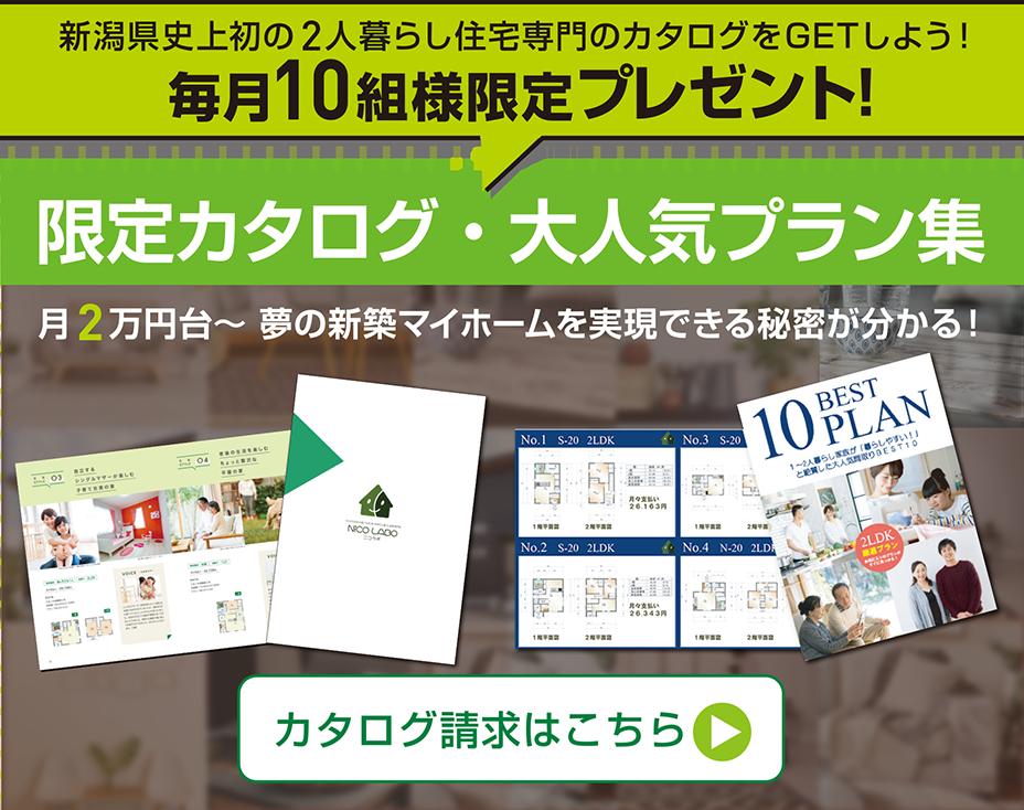 限定カタログ&人気BEST10プラン集
